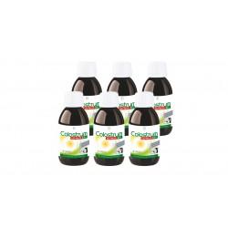 Colostrum Direct set da 6 bottiglie - Liquido - LR - 125 ml